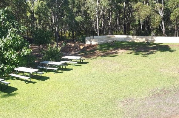 Our back lawn and Amphitheatre. Image Credit: Matt Woods