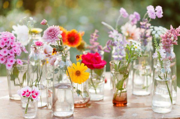 Flowers in jars. Image Credit: wallpapermania.eu