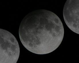 Partial Lunar Eclipse banner