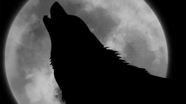 Wolf howling at the Moon. Image Credit: pixabay.com